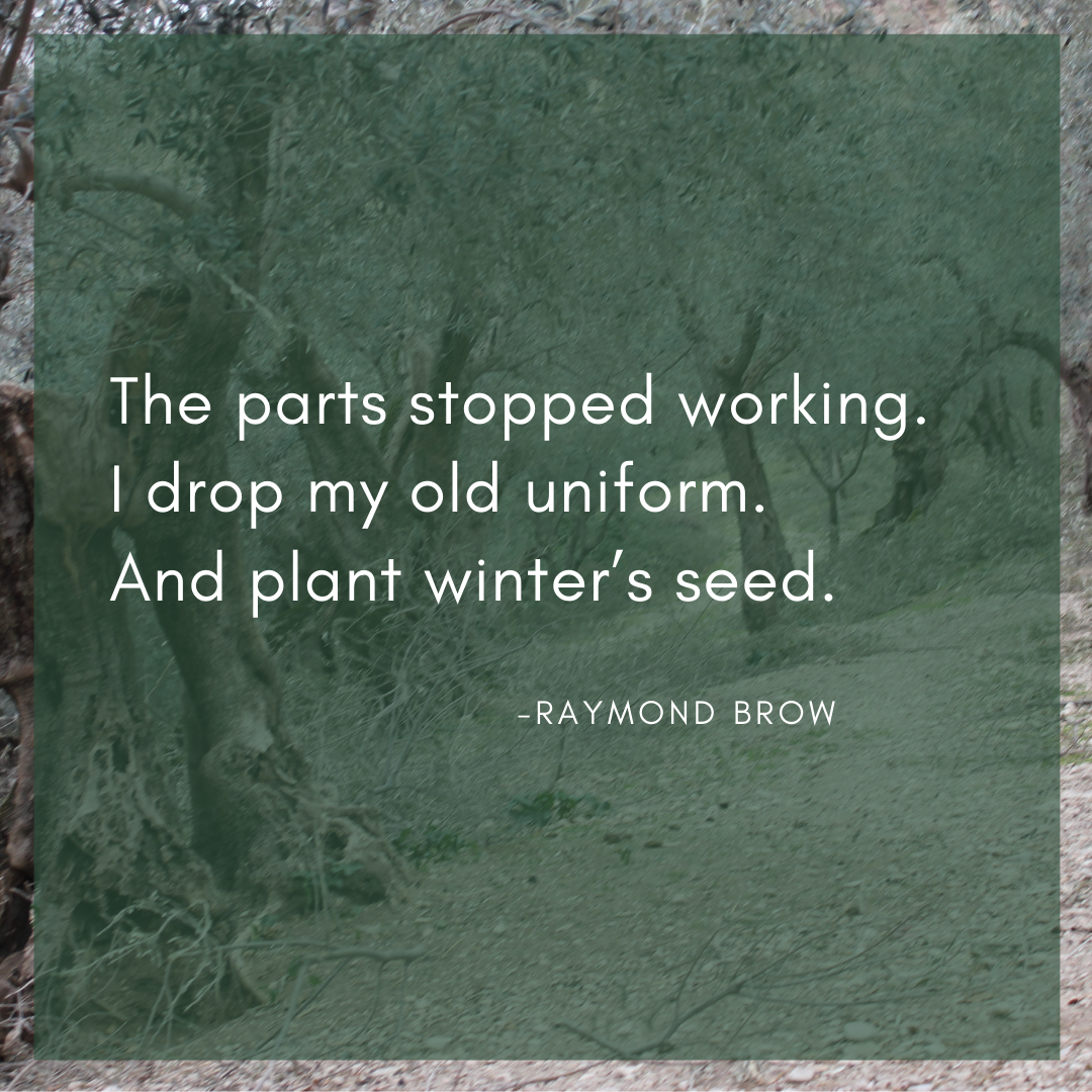 The parts stopped working. /I drop my old uniform. /And plant winter's seed.